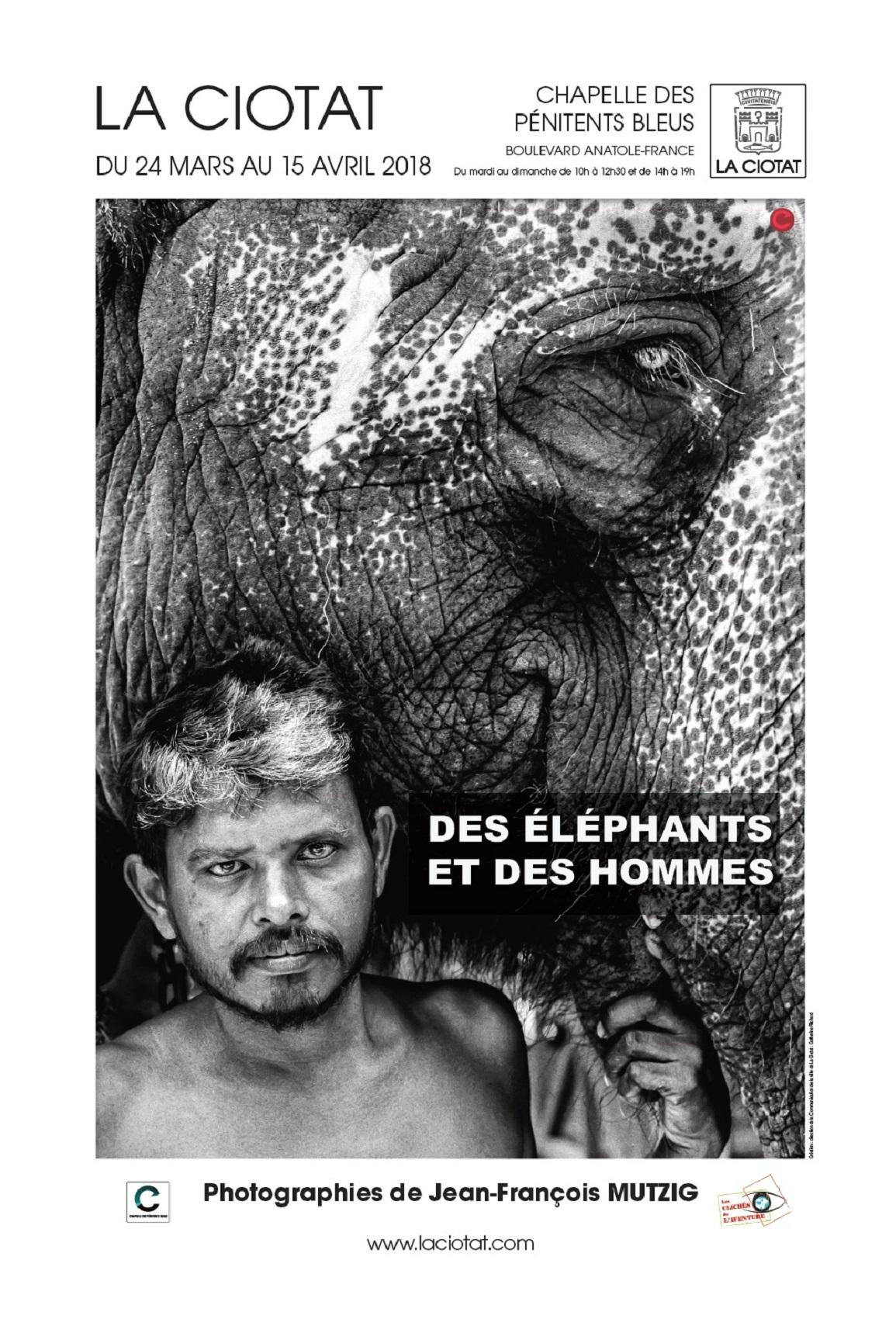 Affiche Exposition Des éléphants et des hommes 2018