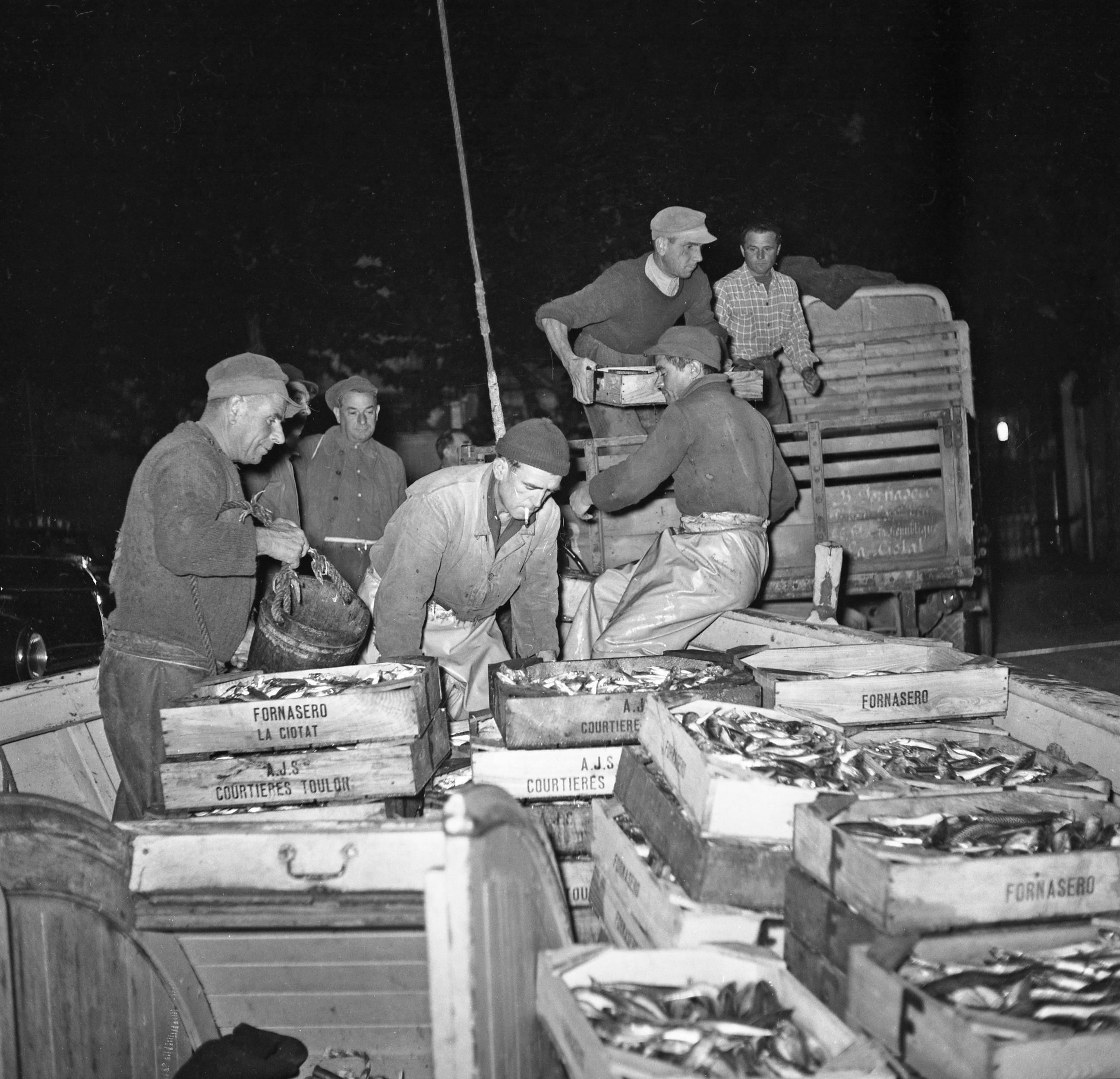 27 Fi 3045 - Monsieur Fornasero et ses pêcheurs déchargent des cagettes pleines  de sardines. La pêche a été bonne ! 19/08/1954