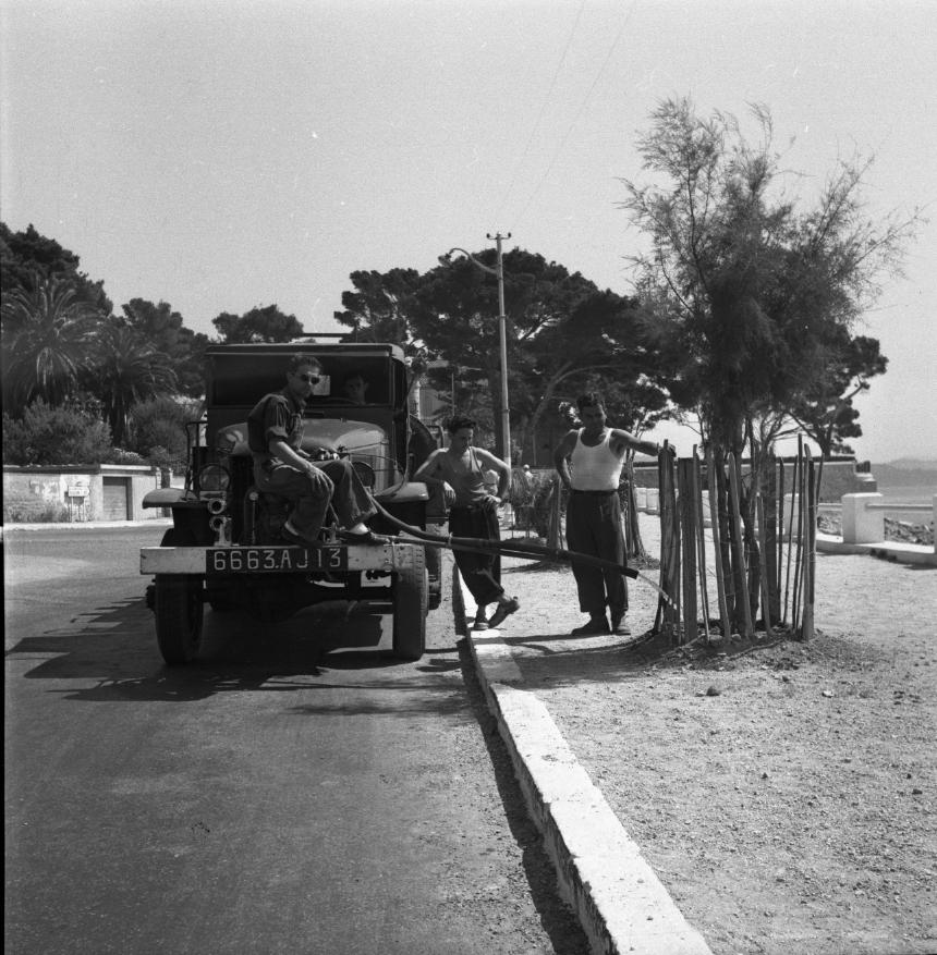 42Fi 0414 « Tout en effectuant un exercice de matériel, les pompiers ciotadens arrosent les plantes vertes ». (Le Provençal) 3/08/1953