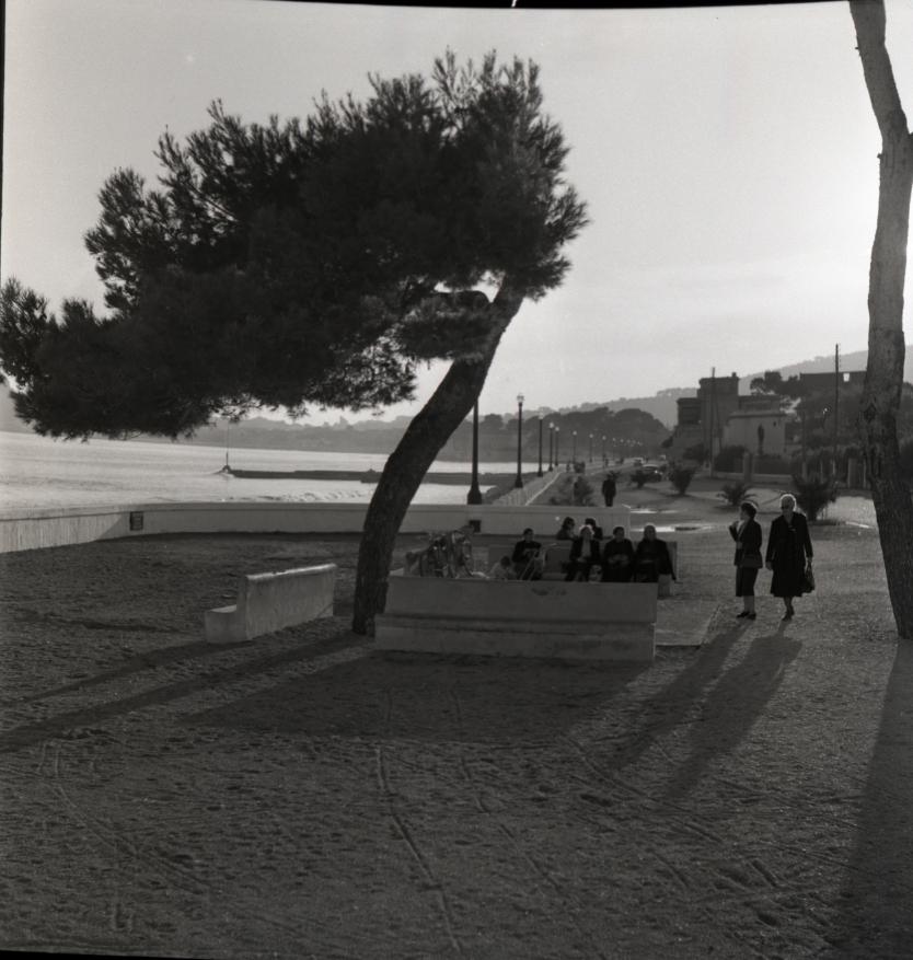 42Fi 1139 Vue du bord de mer avec au premier plan le « belvédère Lumière », trois ans avant la construction du monument. 20/10/1953