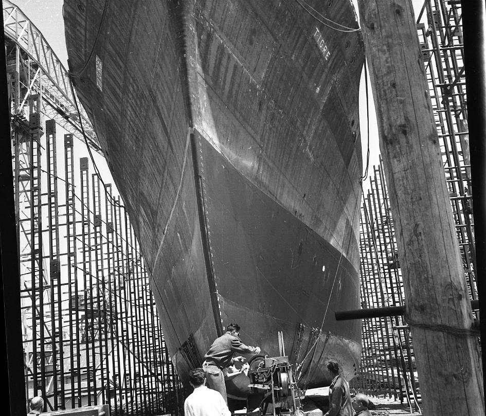 46 Fi 0405 - Gros plan sur l'étrave effilée du cargo Tigre enserré dans une forêt d'étamperches. L'homme que l'on aperçoit procède aux derniers calculs et règle l'enregistreur de vitesse. - 23/06/1956