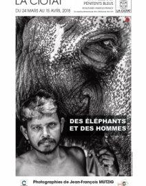 Exposition - Des éléphants et des hommes